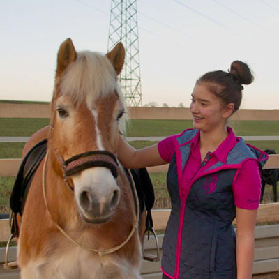 pferd-querin